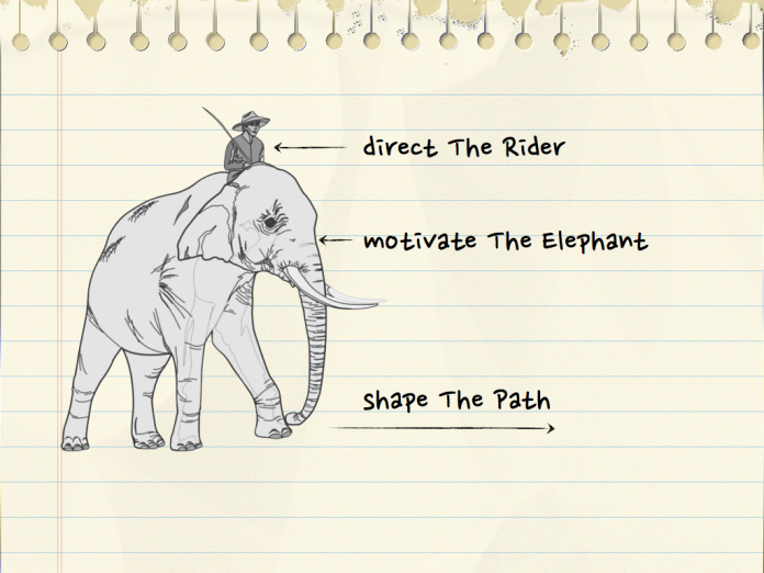 The rider and the elephant metaphor for changing behaviour. From Switch by Dan and Chip Heath.